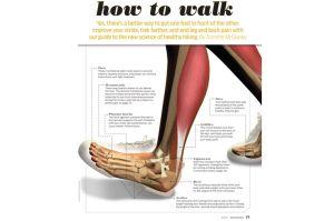walk.jpg