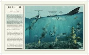 Oceana_foley_infographics-2.jpg