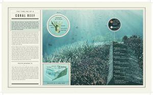 Oceana_foley_infographics-3.jpg